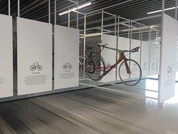 Shimano Cycling World