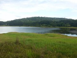 Mavoor Wetlands