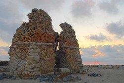 Monumento Naturale Palude di Torre Flavia