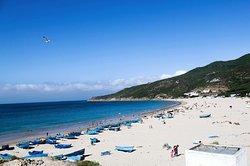 Dalia Beach