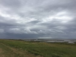 Naturudstilling Mandø