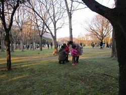 東公園 広々とした公園 十日恵比寿神社もすぐ近く