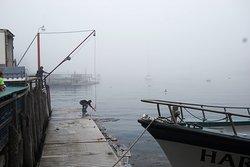 Hardy Boat Cruise