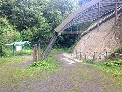 Saurierspuren in Barkhausen