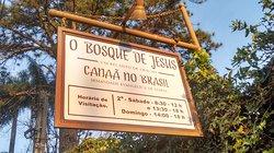 Bosque de Jesus