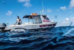 Beluga Diving Vava'u