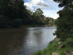 Warrandyte River Reserve