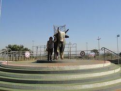 Memorial do Peão de Boiadeiro