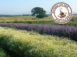 The Spice Way Herb & Spice Farm