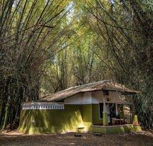 Casa Deep Woods