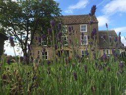 Greyfox House Bed & Breakfast