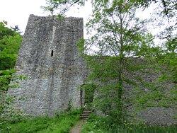 Weissenau Castle