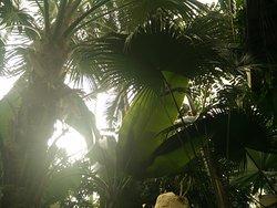 Xueye Agri-Expo Garden