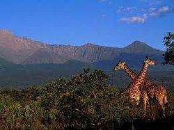 3crest Tours & Safaris