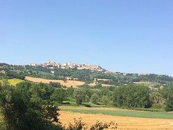 Heart of Italy Azienda Agricola