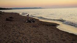 Beautiful Beach Access!