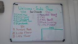 Dive Sites - San Clemente Island