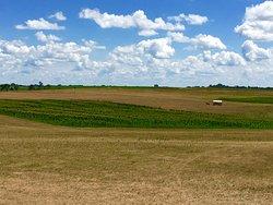 Ingalls Homestead - Laura's Living Prairie