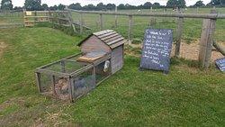 Hackwood Farm