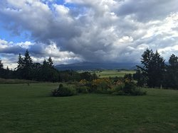 Mount Hood Organic Farm