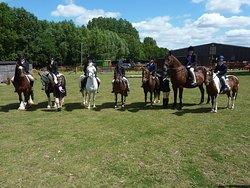 Hobby Horse Riding Centre