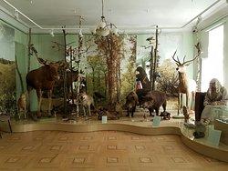 Tambov Regional Local Lore Museum