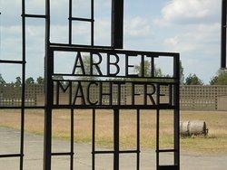 Mosaic Non-Profit Sachsenhausen Memorial Tours