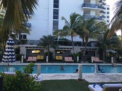 My new favorite in Miami Beach!