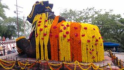 Elegance of the decoration on Nandi!
