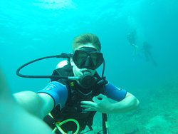 Sunshine Diving