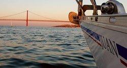 Alquileres de barcos