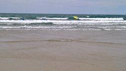 Jersey Surf School
