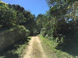 Military Ridge State Trail