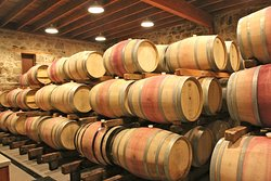 Spottswoode Estate Vineyard & Winery