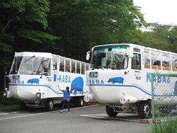 Kaba Bus