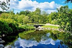 Kumpula Botanic Garden