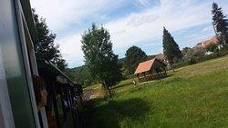 Forestry Railway, Csomoder