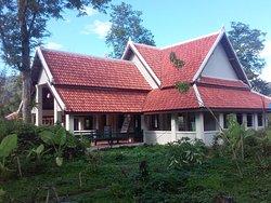 All Lao Elephant Camp