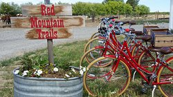 Red Mountain Trails