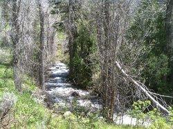 Jardine Juniper Trail