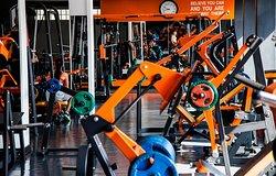 Elite Gym & Fitness Exclusive