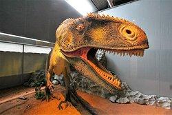 Musee des Dinosaures 'Dinosauria'
