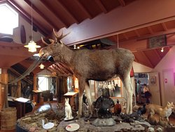 Aland Hunting & Fishing Museum