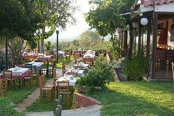 Paradosiaki Taverna Dimotsis