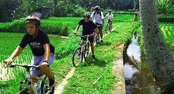 Dedut Bali Tour