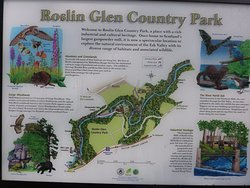 Roslin Glen Country Park