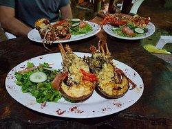 krazy lobster