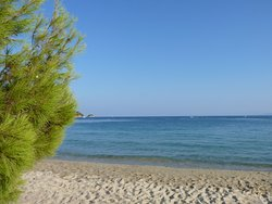 Koukunaries Beach (pines, sand and water)