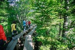 Kamikochi National Park Guide