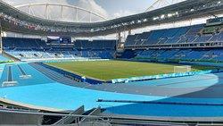 Estadio Olimpico Nilton Santos